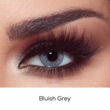 Bella Bluish Grey - Oneday Collection